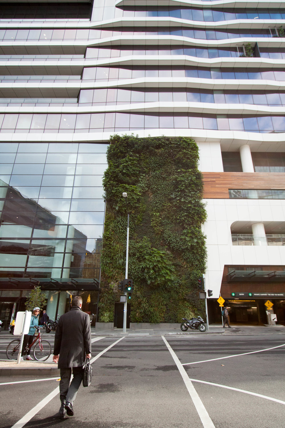 Living walls: the ultimate cure for Mondays? Medibank Place, Melbourne. © Julianna Rozek/@plantsgo_up