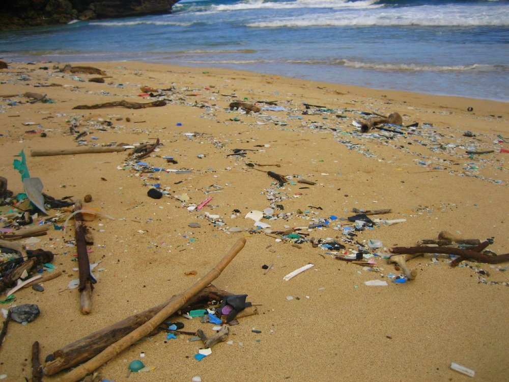 Plastic accumulated on a beach in Hawaii.   miwa/Flickr  (CC BY-NC-SA 2.0)
