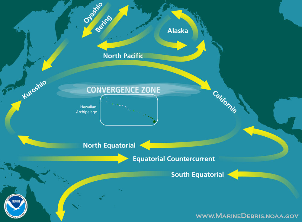 The North Pacific Subtropical Gyre.   NOAA  (public domain)