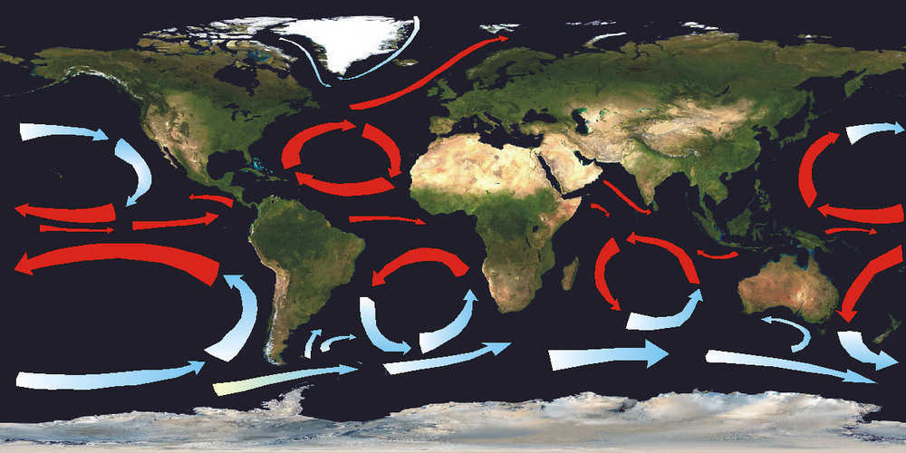 The five major ocean gyres, along with other currents. NASA/Wikimedia Commons (CC BY-SA 3.0)