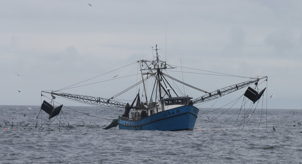 The global fishing industry is worth billions of dollars worldwide. Jon D. Anderson/Flickr (CC BY-NC-ND 2.0)