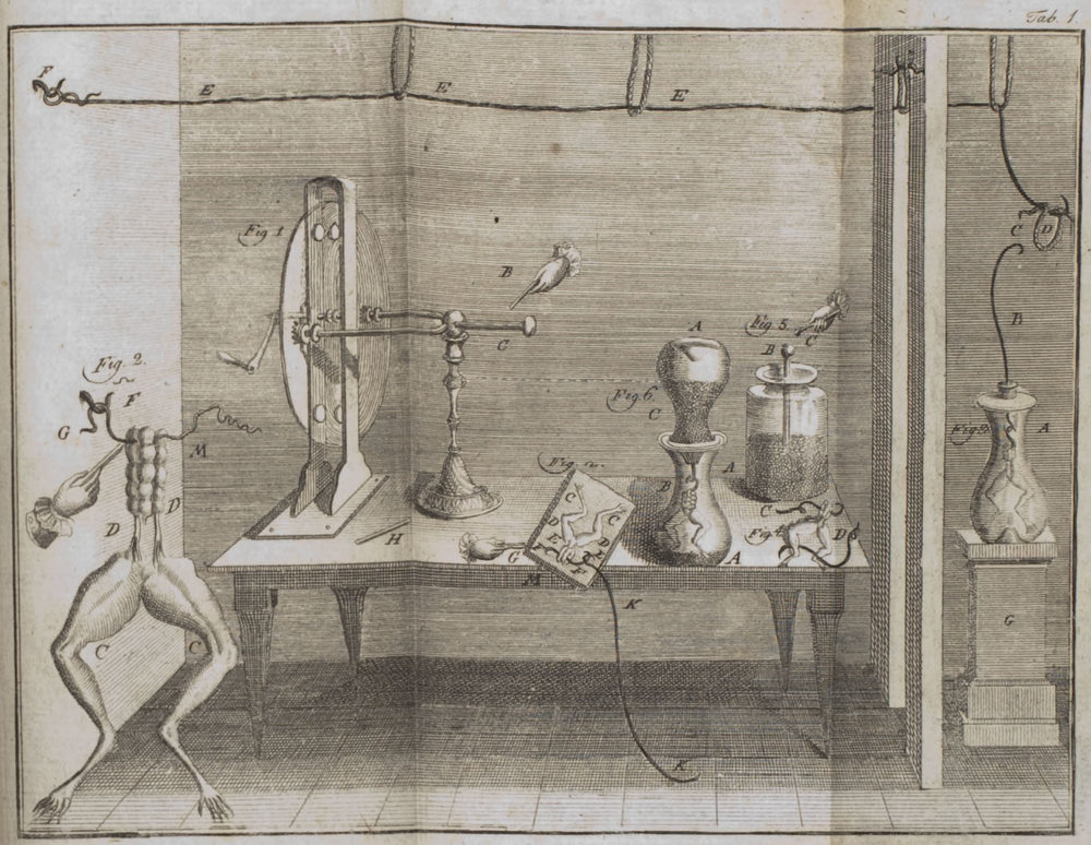 An illustration of Galvani's frog leg experiment that appeared in his treatise  De viribus electricitatis in motu musculari.  Wikimedia Commons  (public domain)