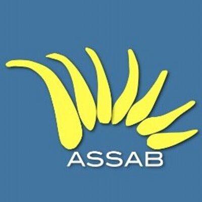 ASSAB logo.jpeg