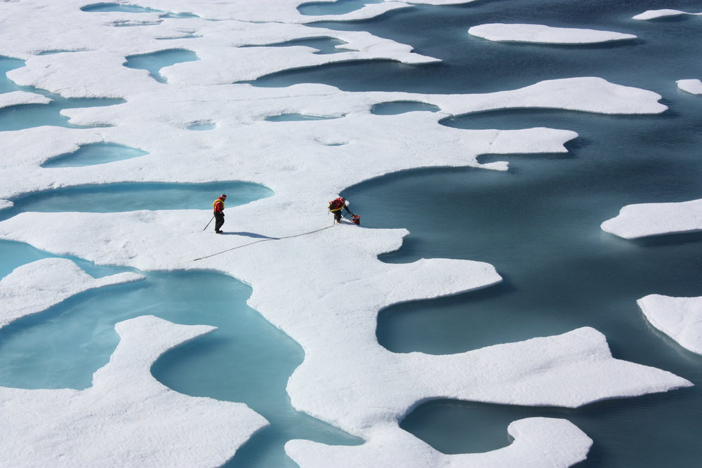 "NASA's ""Impacts of Climate on Ecosystems and Chemistry of the Arctic Pacific Environment"" (ICESCAPE) mission investigated the effects of changing conditions in the Arctic in 2010 and 2011. Such research can then be used to inform future policy.   NASA/Flickr  (CC BY 2.0)"