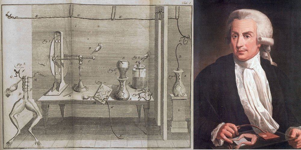 Italian scientist Luigi Galvani (right) with an illustration of the experiment for which he is best remembered .  Luigi Galvani/Wikimedia Commons  (public domain);  Unknown author/Wikimedia Commons  (public domain)