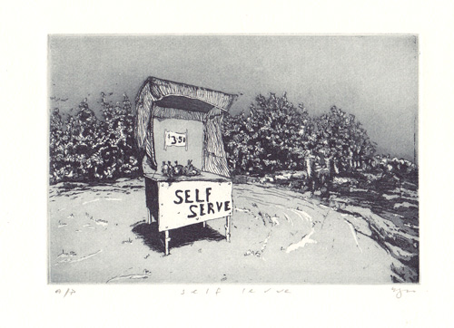 Self Serve  2011 Etching and aquatint on Hahnemuehle, edition 10, 260 x 240mm. Printed by Antonia Aitken at The Art Vault