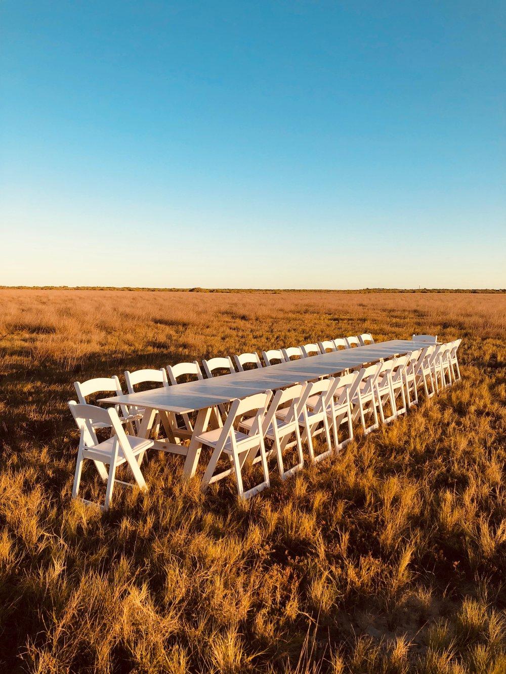 White Trestle Table $70