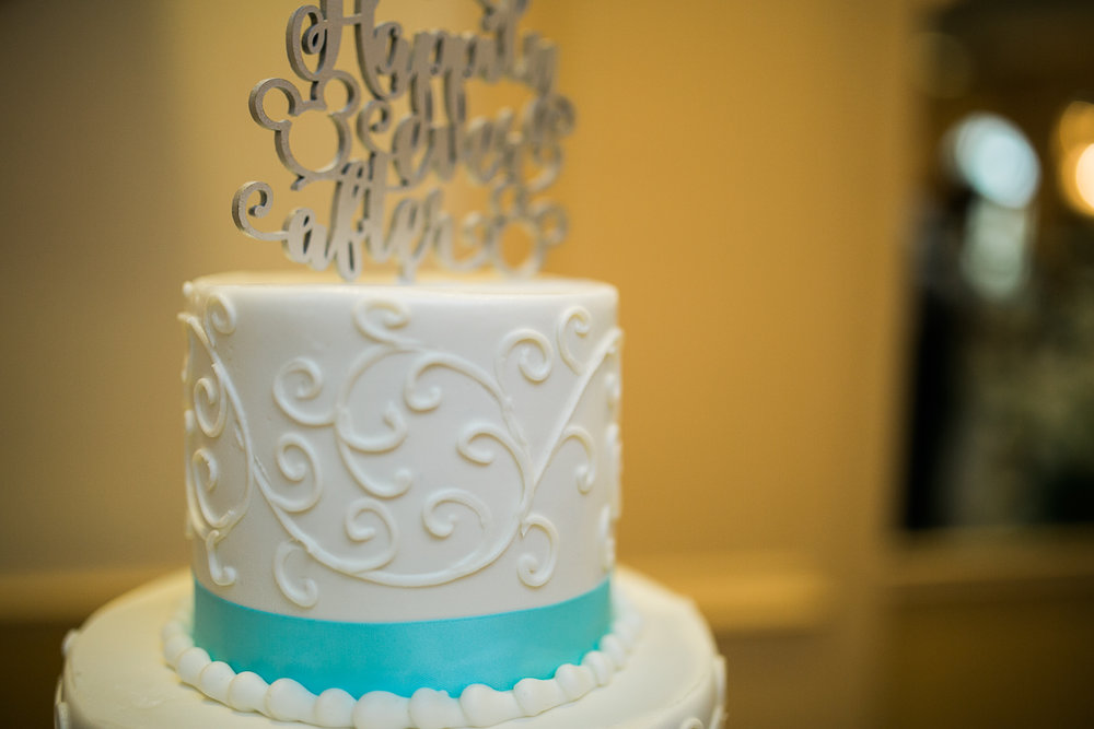 Disney Wedding New Jersey Sweet Alice Photography-1-72.jpg