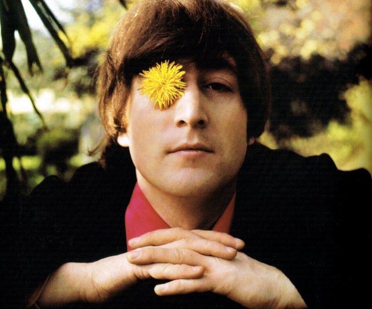 Cellophane flowers of yellow and green beatles by day john lennon 1965 mightylinksfo