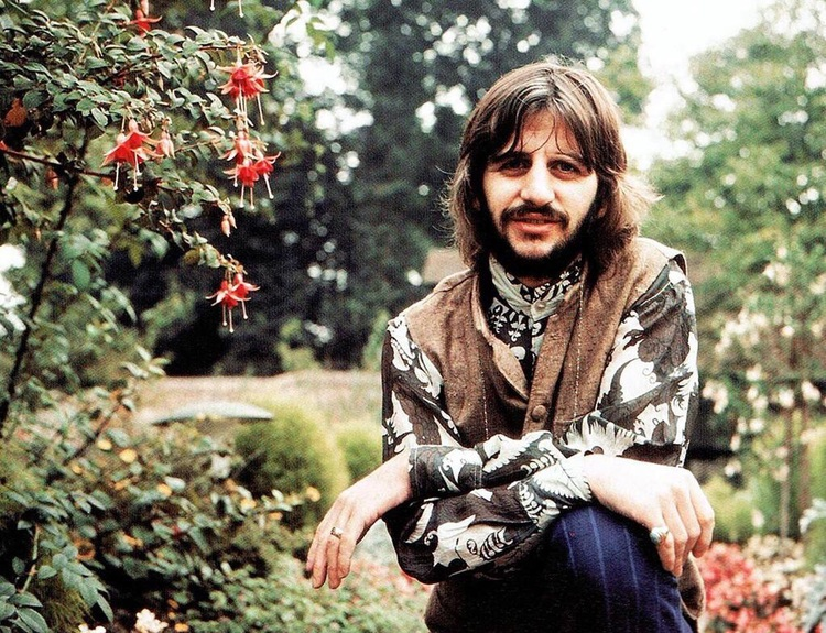 Cellophane flowers of yellow and green beatles by day ringo starr circa 1969 mightylinksfo