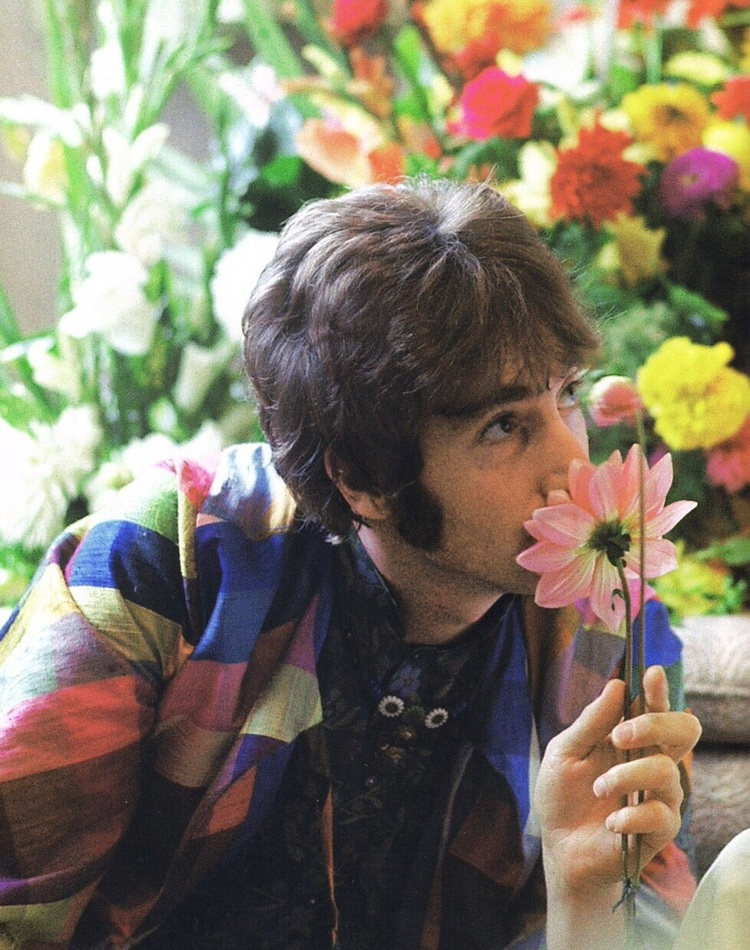 Cellophane flowers of yellow and green beatles by day john lennon 1967 mightylinksfo