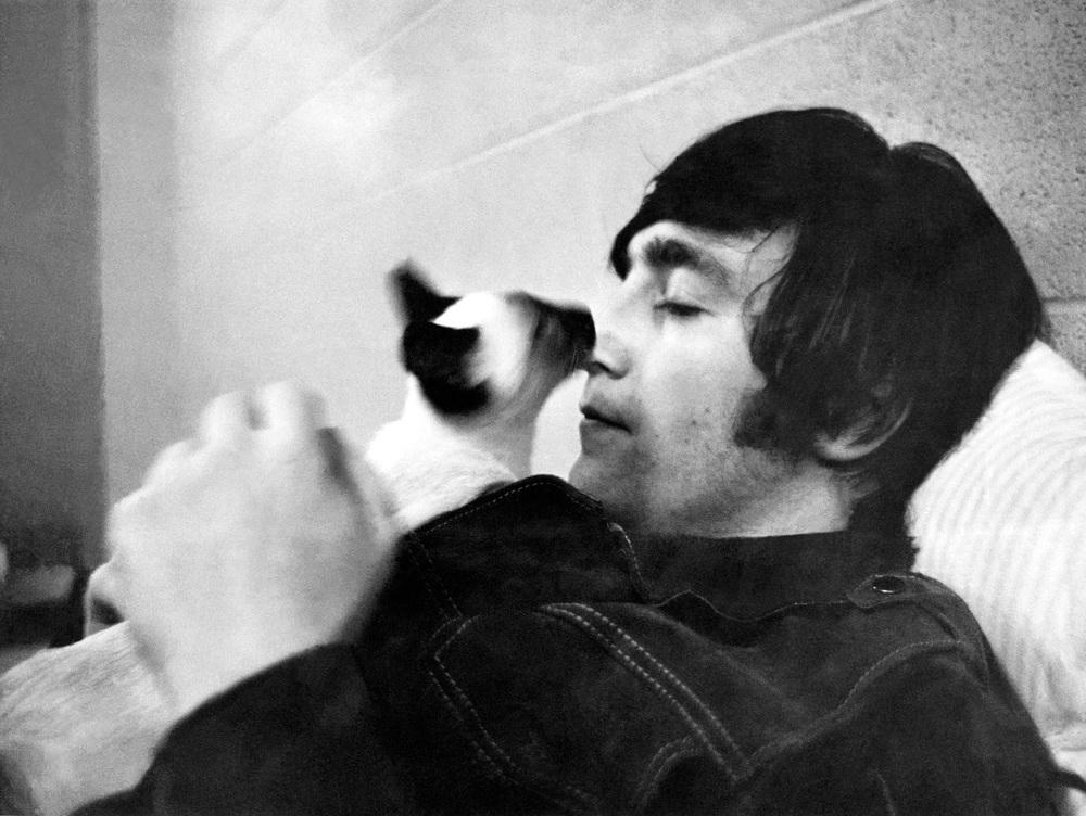John Lennon with a cat friend, 1965.