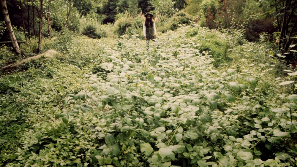 George Harrison at Friar Park, 1970.
