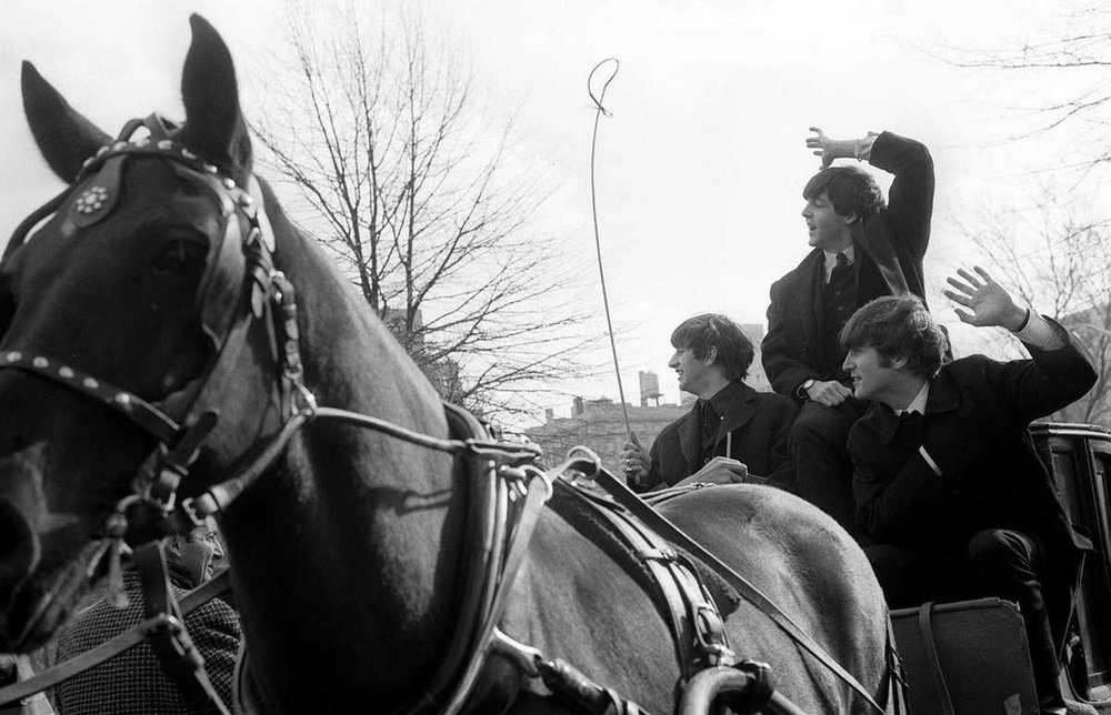 The Beatles riding a horse and cart in New York, February 8th 1964.