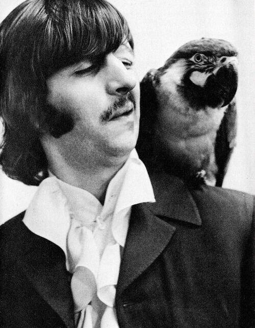 Ringo Starr on the Beatles' Mad Day Out photo shoot, July 28th 1968.