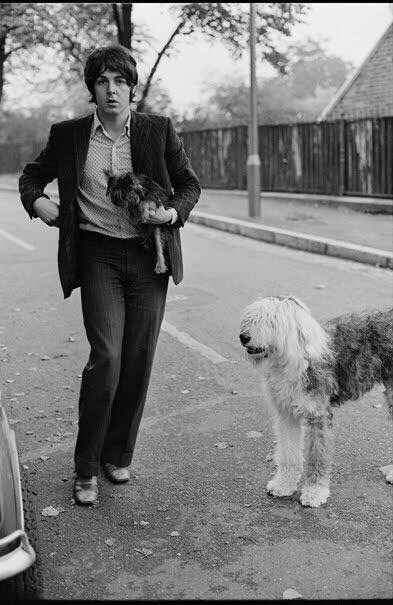 Paul McCartney out for a walk with his sheepdog Martha, 1968.
