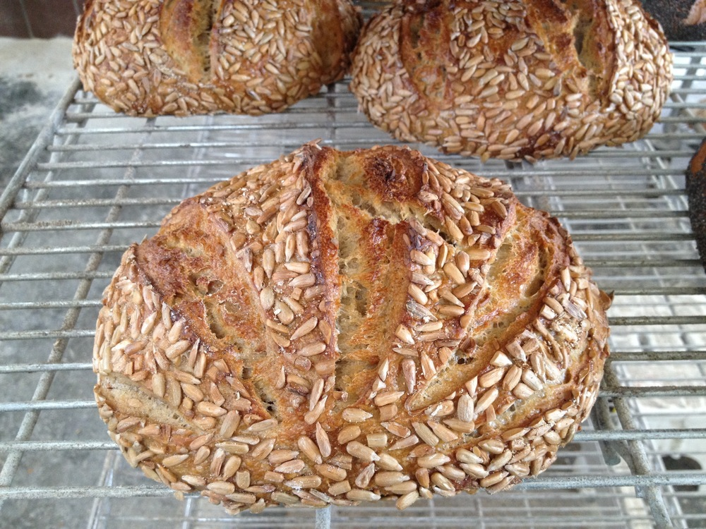 SUNFLOWER SOURDOUGH