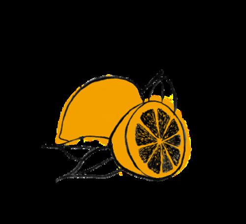 Site+-+lemon.png