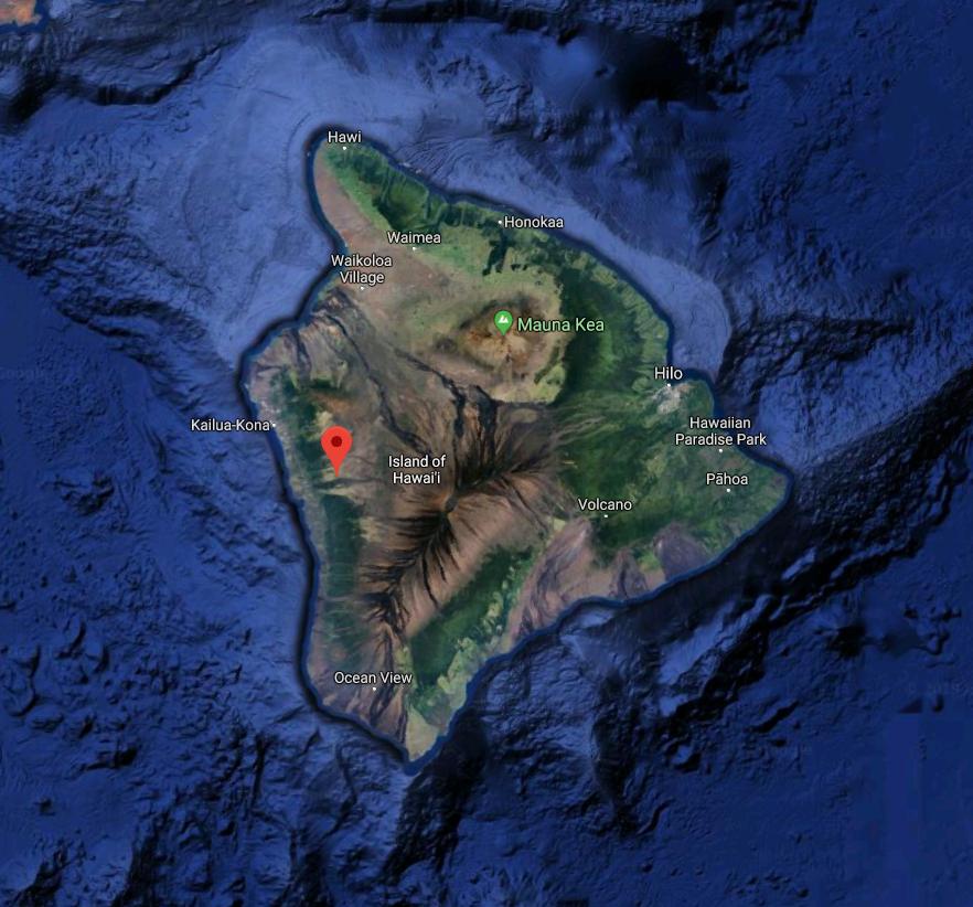 Koa Trees - Reforest Hawaii x Nyala Skin Care 2.PNG