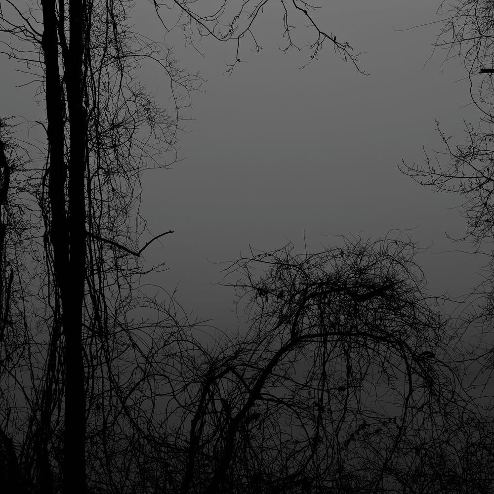 Black_River00004_04.jpg