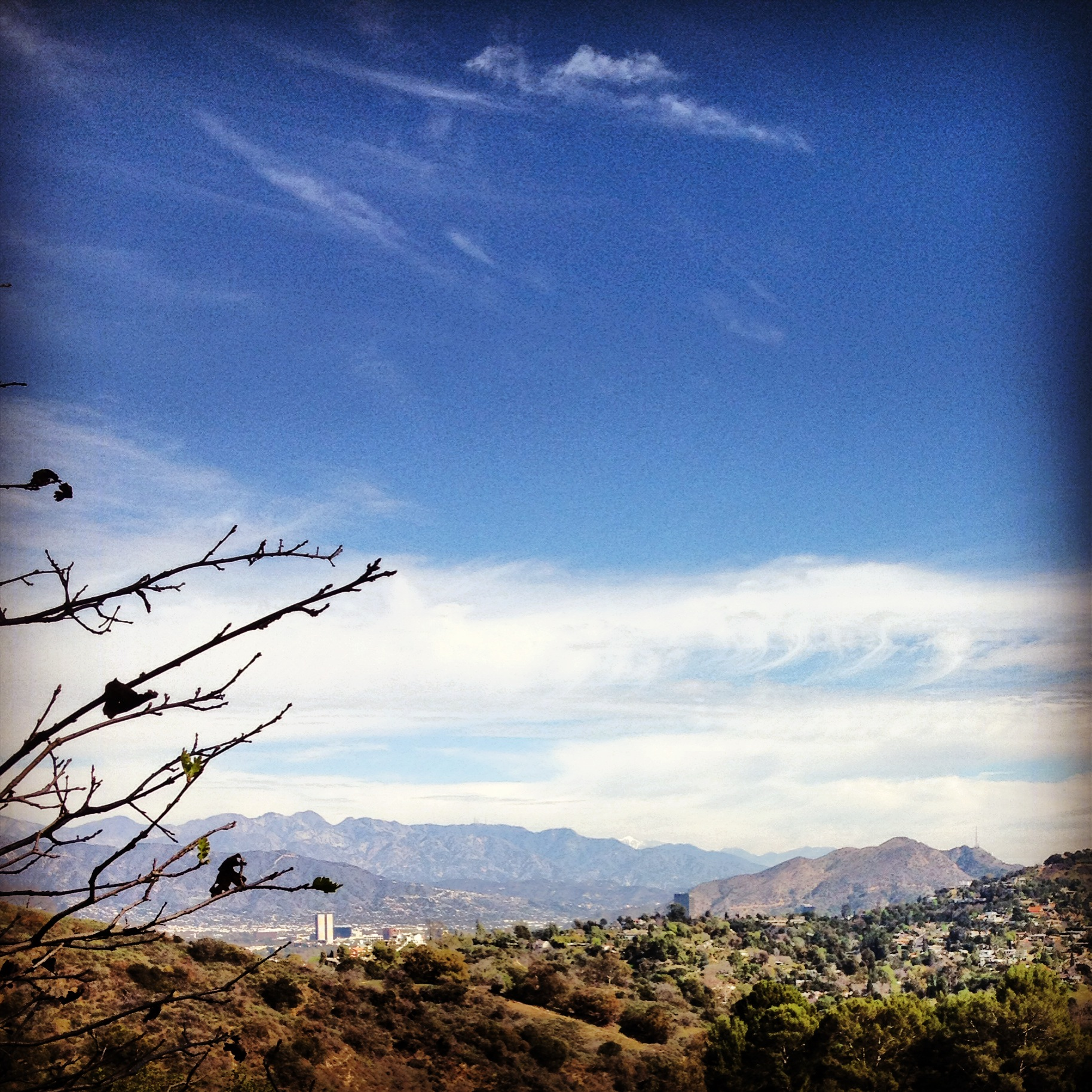 Fryman Canyon Hike