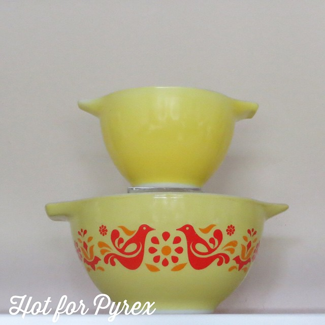 Day 3 of 100 - Yellow 440 with Friendship Cinderella 441 for comparison.  I purchased this from a wonderful person whom I met on my trip to PA.  There are measuring lines inside the bowl.  #hotforpyrex #htfpyrex #cmog #100hfp #pyrexlove #pyrexaddict #vintagepyrex