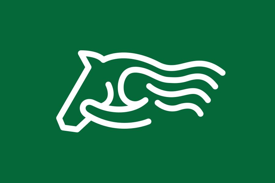 LOGO-Horses-N-Heroes_charity.jpg