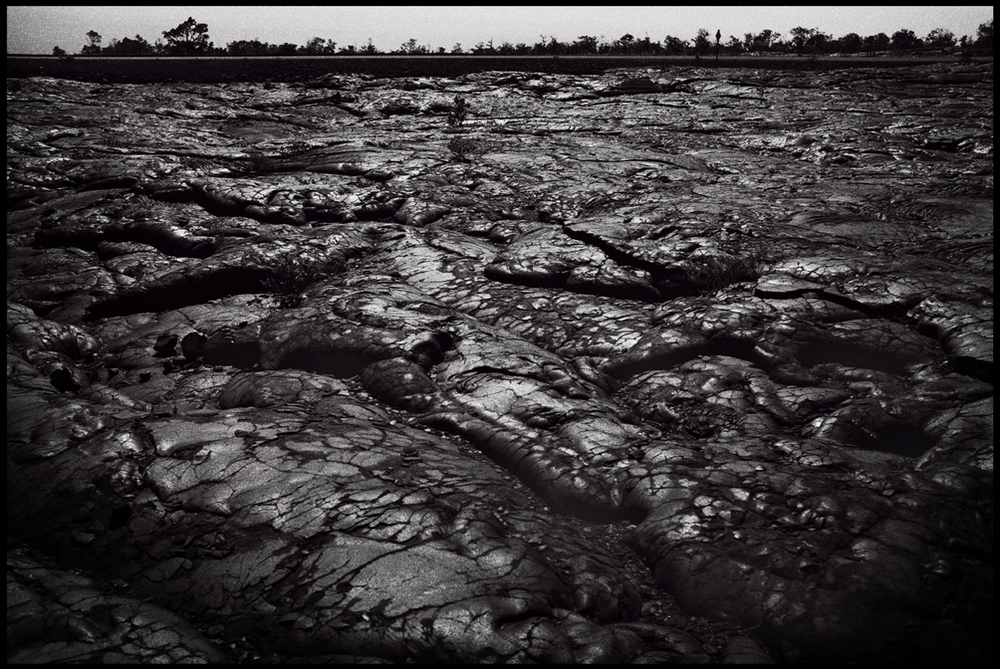 Scorched earth.