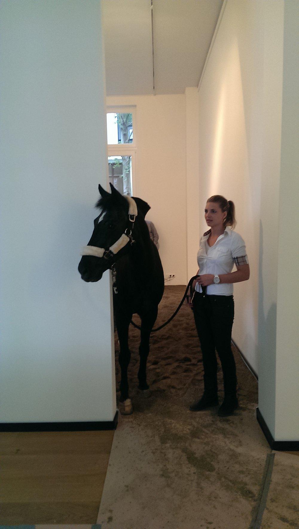 MC Krell - Oscar Santillan - Horse Morse, 2014 (c) Foto MC Krell (2).jpg