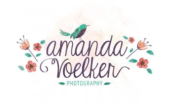 Amanda Voelker Photography