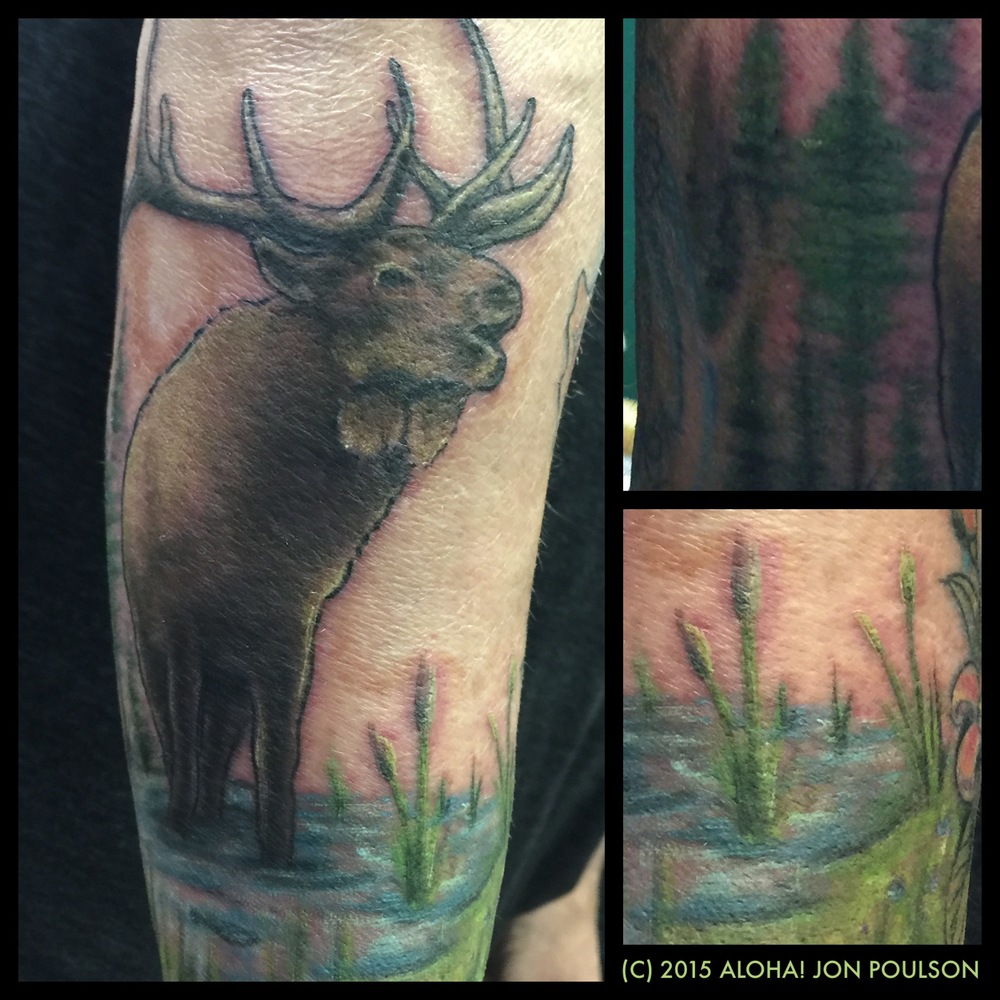 Elk in meadow Tattoo by Jon Poulson