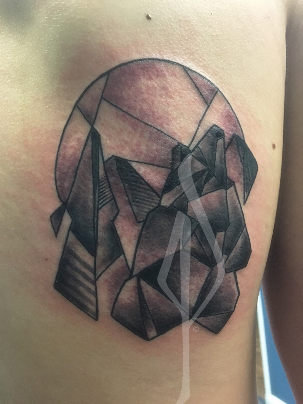 Geometric Wolf Tattoo by Jon Poulson - Aloha Salt Lake Tattoos