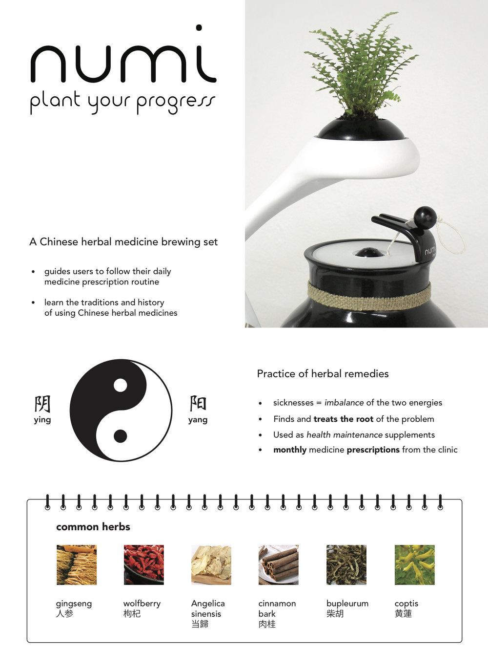 Chinese health herbal medicine supplement - The Way Western Medicines Work