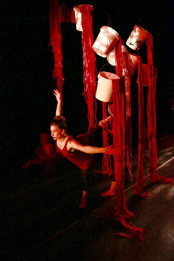 Bloodlines,  Art Installation: Kim Radatz; Bloodlines, Parts of You Are Me, Choreographer: Cynthia Hennessy; Dancers; Brooke Bradley & Crystal DelGiudice: Image: Kim Radatz