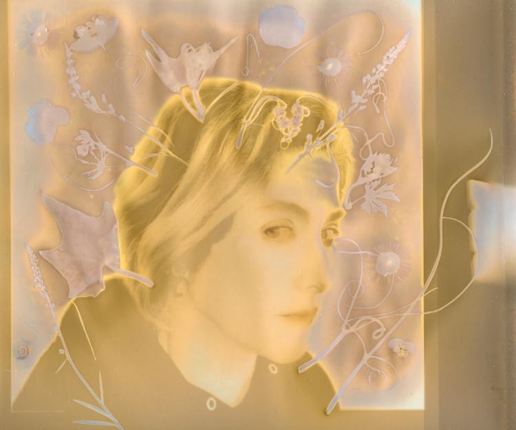 Cassandra Listens , Diane Fenster