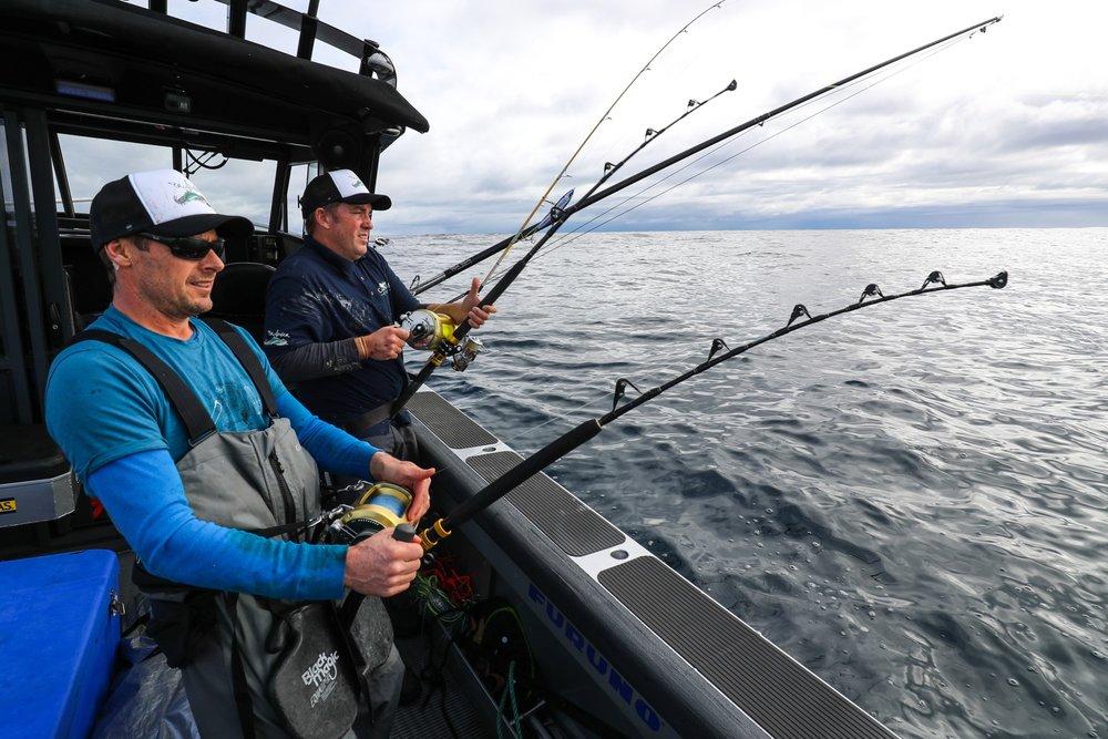 southern_bluefin.jpg