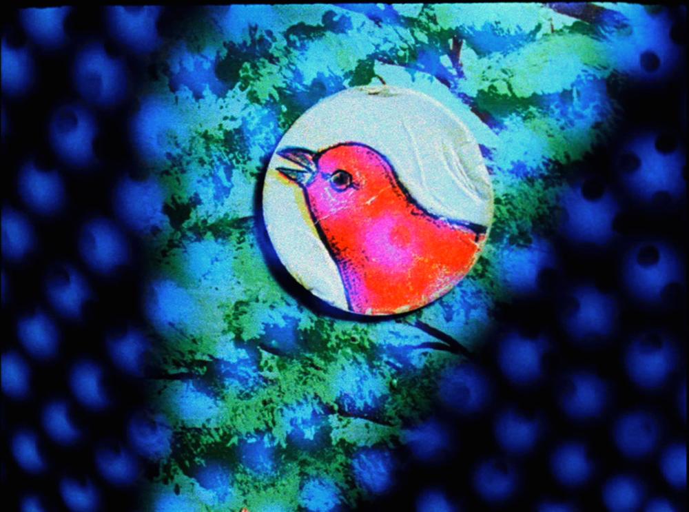 Ghost Algebra bird in tree x.jpg