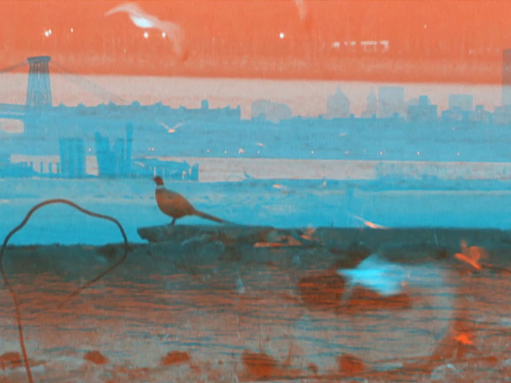 """Eastern District Terminal    Eastern District Terminal documents a particular lost time and place: the Brooklyn waterfront after the end of its use as an industrial and shipping site, but before it became the front lawn for the shiny apartment towers to come. In that in-between moment, the space functioned as a """"temporary autonomous zone."""" Shot using a homemade 3D rig, the film wanders and turns through the zone and, along the way, encounters three of its denizens.  Michael Gitlin  USA, 2018, 10:30 mins  Visit the   artist's website here  ."""