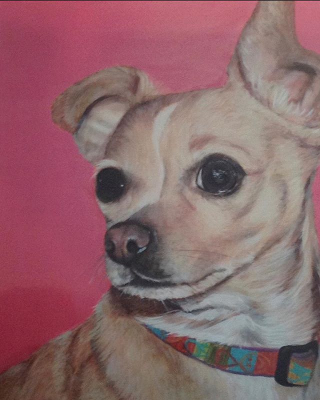 What's more fun then painting animals  Woof Woof 🐶