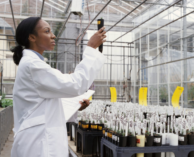 For U.S. News—Report: Black Students Underrepresented in High-Paying STEM Majors