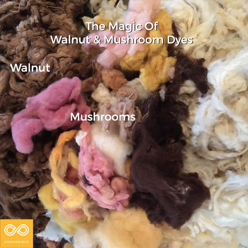Mushroom Dyes