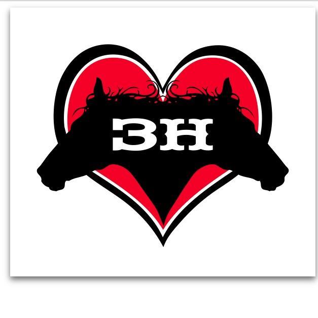 horses healing hearts logo.jpg