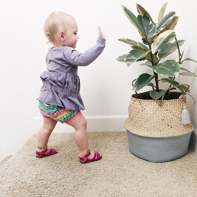 We say hello to the plants in our home. ⠀ We actively practice gratitude behavior. ⠀ But we also throw tantrums and don't clean up our messes. ⠀ This is balance, And I'm loving it. 🌿