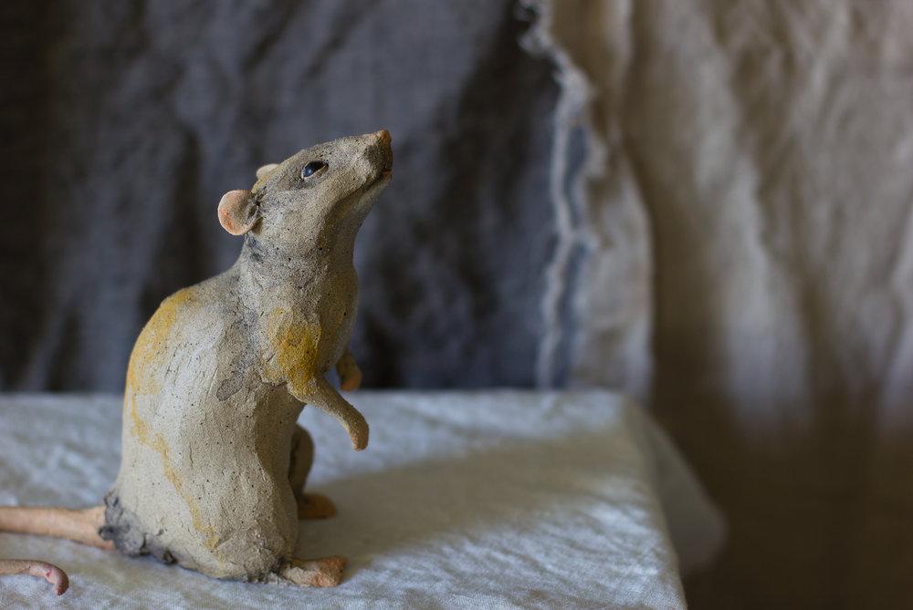 """""""Rat"""""""