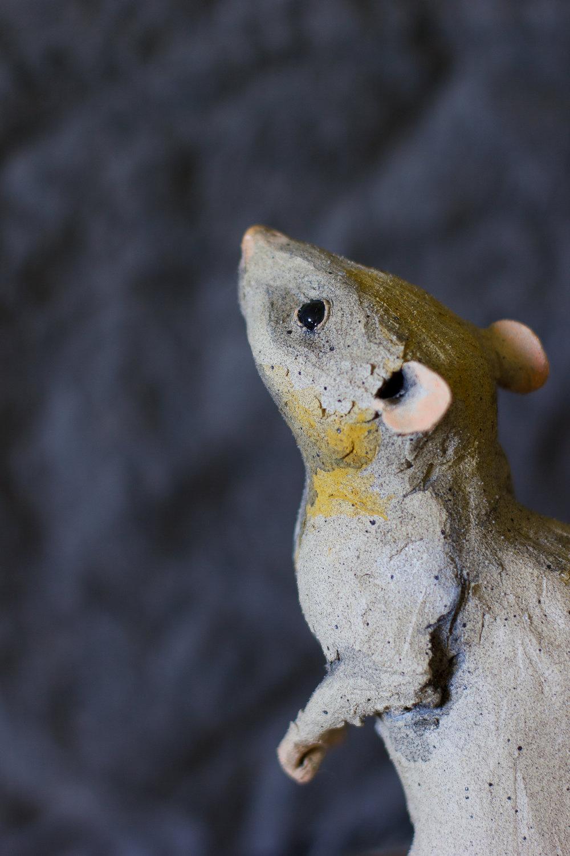 """""""Rat"""" Detail"""