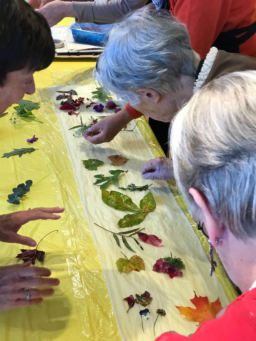 Placing-Leaves-on-Fabric.jpg