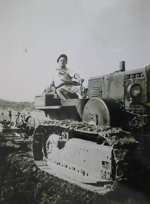 Michael's grandfather plowing a field in Sicily, circa 1938