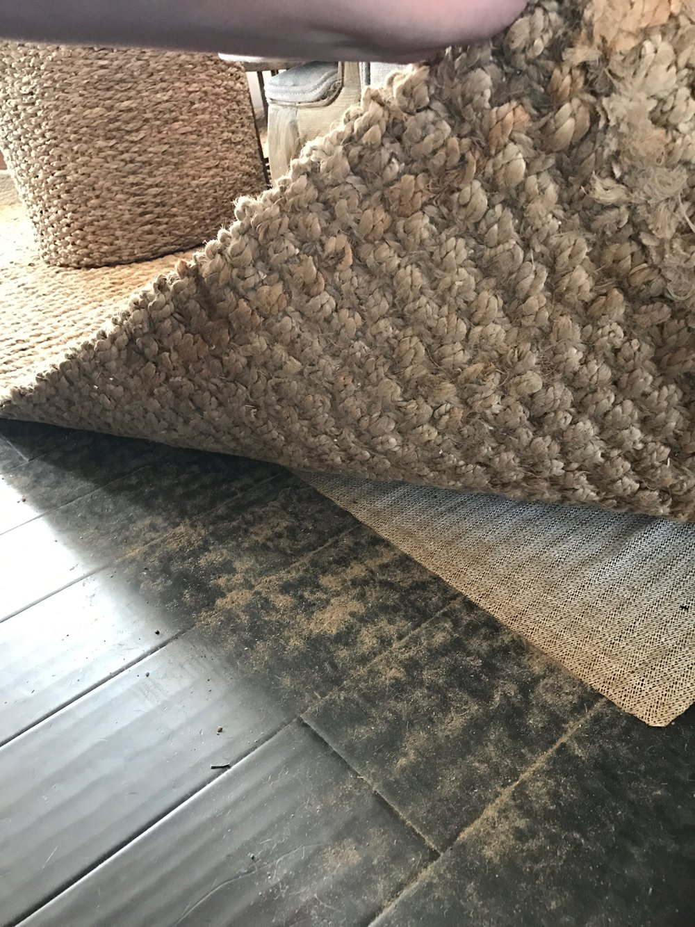 Jute Rugs- The Ugly Truth- Sharing it All!
