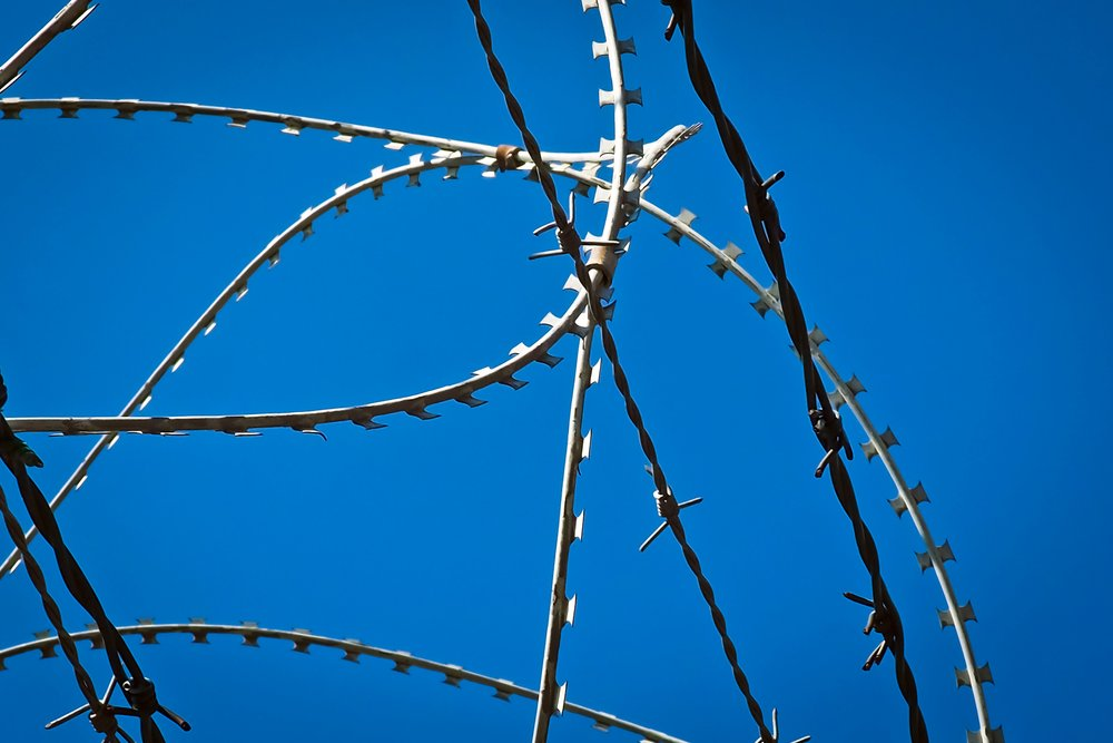 terror barbed-wire-1675913.jpg