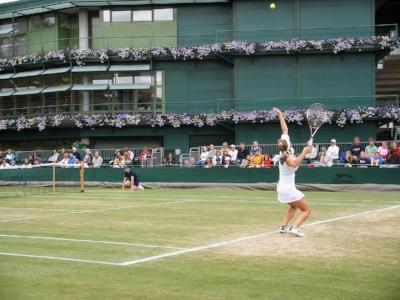 tennis-666723_1280 wimbledon.jpg